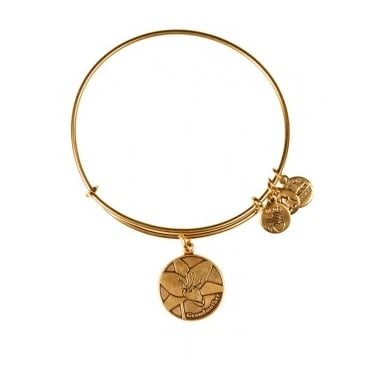 Alex and Ani Because I Love you Grandmother Expandable Rafaelian Gold Bangle