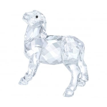 Swarovski Nativity Scene Sheep